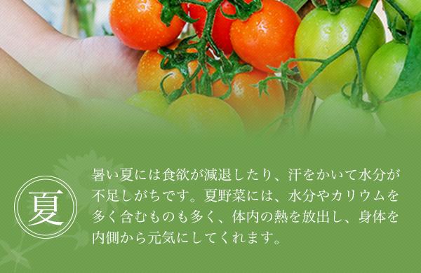 暑い夏には食欲が減退したり、汗をかいて水分が不足しがちです。夏野菜には、水分やカリウムを多く含むものも多く、体内の熱を放出し、身体を内側から元気にしてくれます。