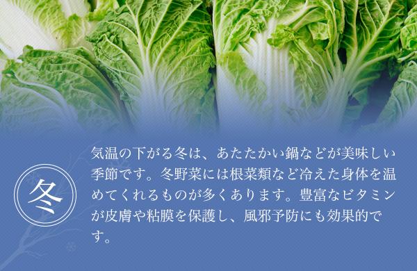 気温の下がる冬は、あたたかい鍋などが美味しい季節です。冬野菜には根菜類など冷えた身体を温めてくれるものが多くあります。豊富なビタミンが皮膚や粘膜を保護し、風邪予防にも効果的です。
